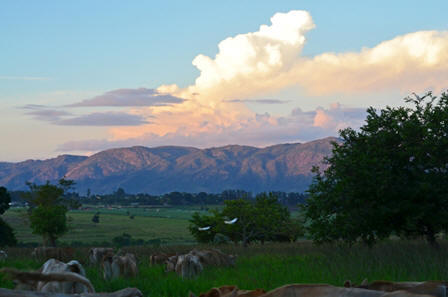Nyanza evening view of Mdzimba Mountains
